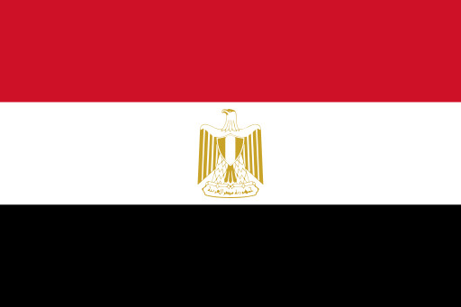 Egyptians possibly persecuted due to low turn-out rate Senate elections