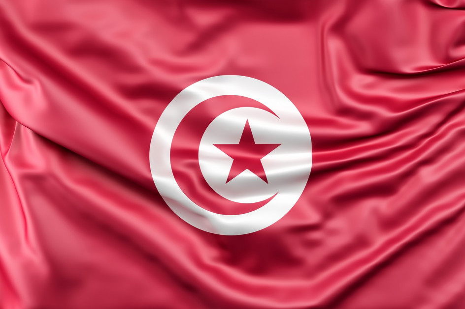 Tunisian Interior Minister sacked, technocratic cabinet at risk